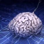 Διεγερμένα εγκεφαλικά κύτταρα
