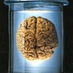 Εγκέφαλος22-201x300