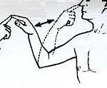 isorropia-thesi-somatos-pareggefalida2